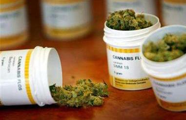 Medicinal cannabis - photo from www.newsfood.com