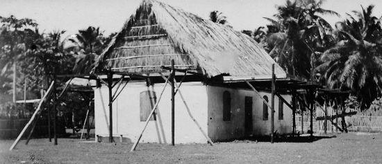 The coconut oil store